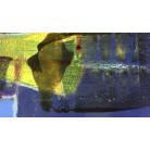 Icecream Flying yelow-darkblue