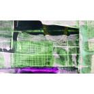 Grid Falling green-violett